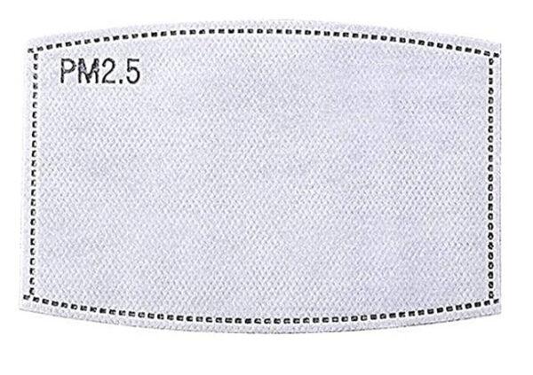 pm2 filtereinlage für mundschutz